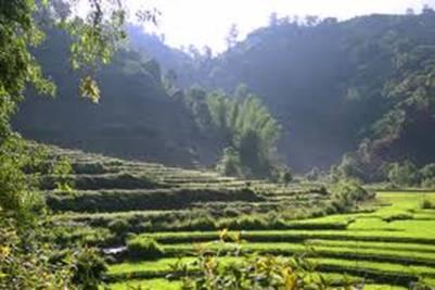 Cảnh bên đường đi hồ Pá Khoang – Ảnh: nguồn panoramio.com