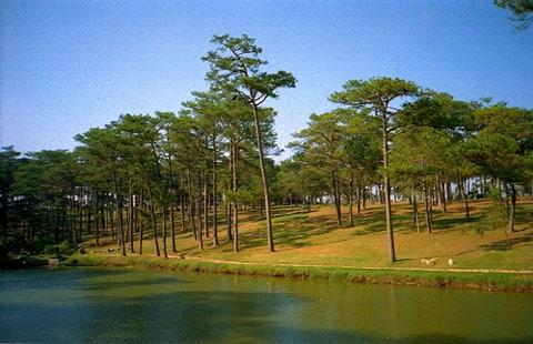 Nằm ở phía Bắc thành phố Đà Lạt là khu du lịch hồ Than Thở.
