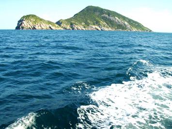 Sóng biển xô bờ