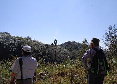 Bìa rừng Phia Oắc