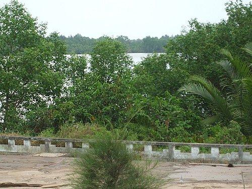 Từ đền thờ chính nhìn ra sông Vàm Cỏ Đông, hướng vàm Nhựt Tảo.