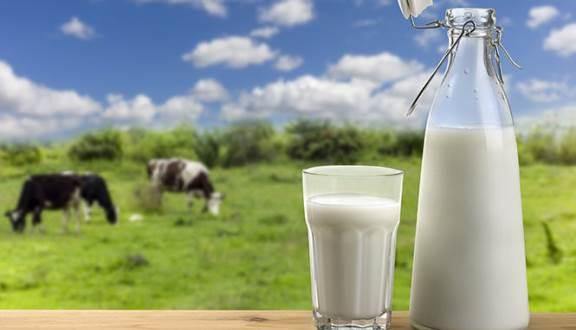 Sữa tươi Ba Vì.
