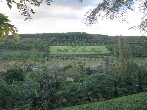 Một góc khu du lịch sinh thái Mỹ Lệ rộng trên 70 ha ở Bình Phước
