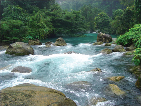 Dòng nước chảy xối xả va vào đá tạo nên những bọt nước trắng xóa