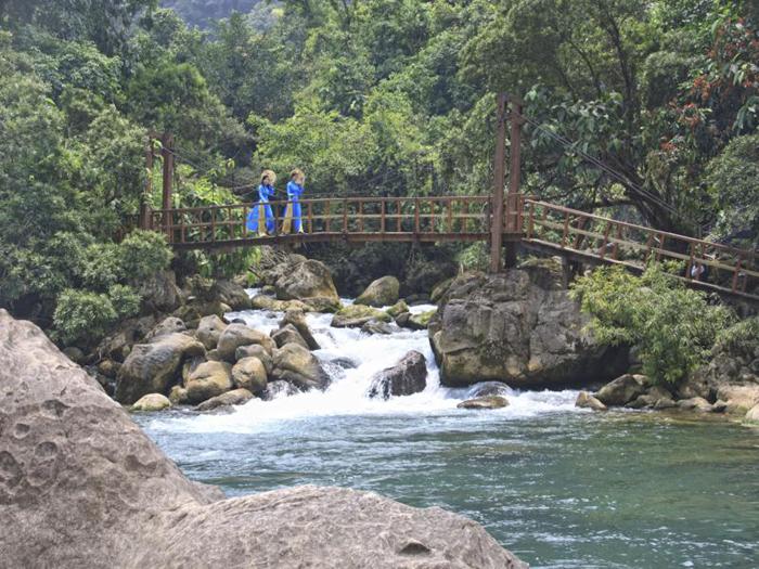 Chiếc cầu gỗ suối Nước Moọc
