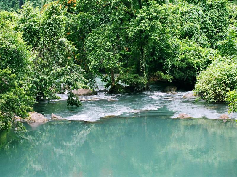 Khu du lịch sinh thái suối Nước Mọoc