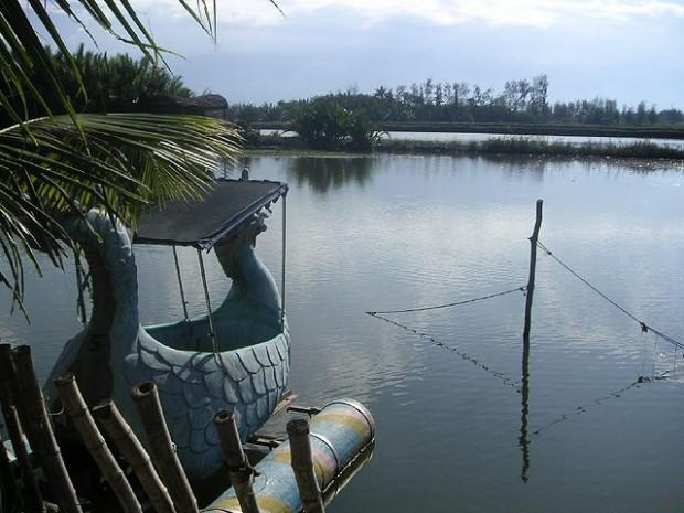 Hồ dành cho các dịch vụ  đi bơi thuyền ngắm cảnh , câu cá ...