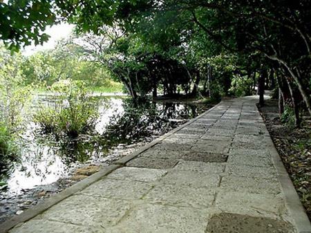 Khu du lịch sinh thái Trằm Trà Lộc