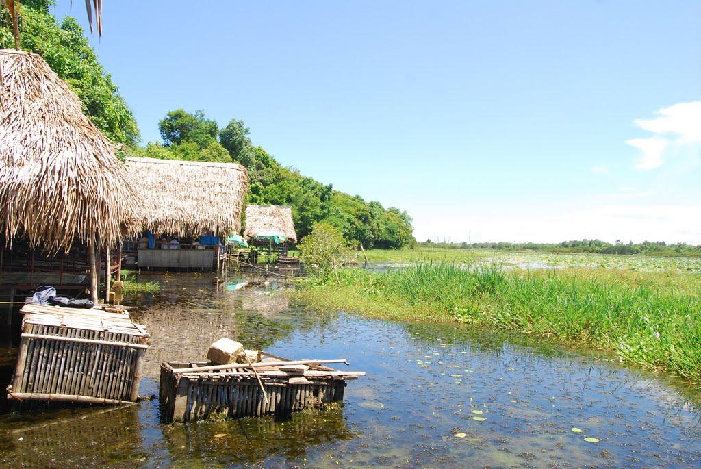 Những ngôi nhà lợp mái lá dọc quanh hồ