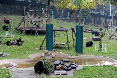 Trung tâm cứu hộ gấu Tam Đảo