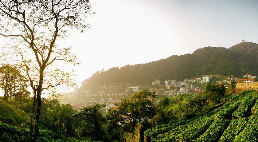 Một góc khung cảnh khu du lịch Tam Đảo.
