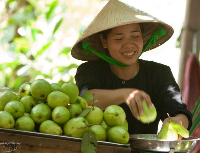 Trái cây hái từ các nhà vườn được phục vụ khắp nơi trong Khu du lịch Vinh Sang.