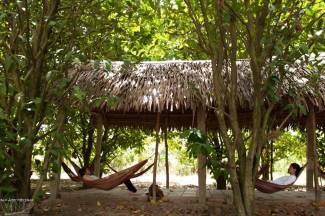 Nghỉ trưa dưới các chòi lá giữa vườn cây mát rượi trong khu du lịch.