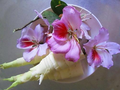 nộm măng đắng hoa ban