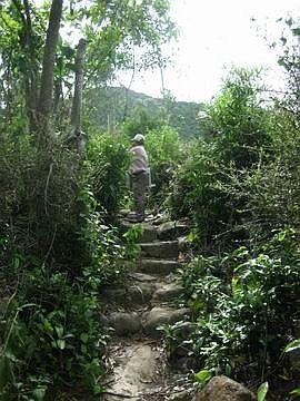 Đường dẫn vào làng.