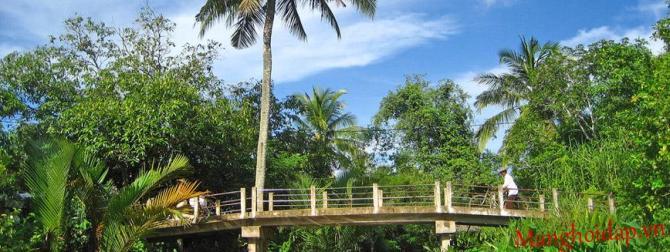 Một chiếc cầu giản dị bắc ngang sông