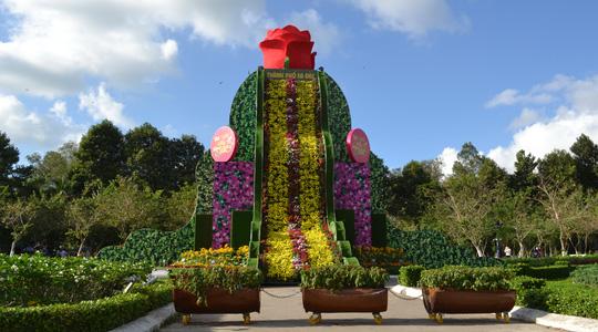 Thác hoa sắp lập kỷ lục Việt Nam ở Công viên Sa Đéc.