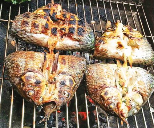 Ăn cá suối chỉ việc nướng chín trên than củi, rồi ăn nóng ngay hoặc nướng qua