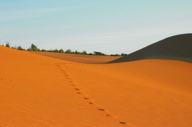 Trải nghiệm nên thử ở Mũi Né - Khám phá đồi cát vàng Mũi Né