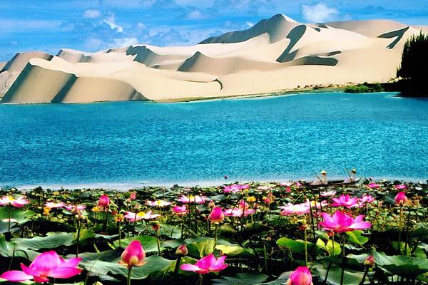 Trải nghiệm nên thử ở Mũi Né - Chèo thuyền tham quan Bàu Sen