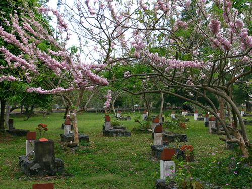http://media.dulich24.com.vn/diemden/nghia-trang-hang-duong-4058/nghia-trang-hang-duong-6.jpg