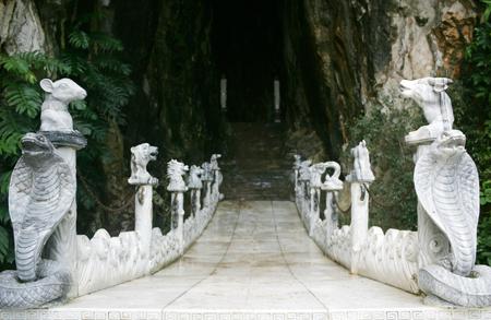 đường vào hang
