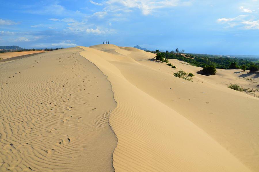 Đồi cát Nam Cương.