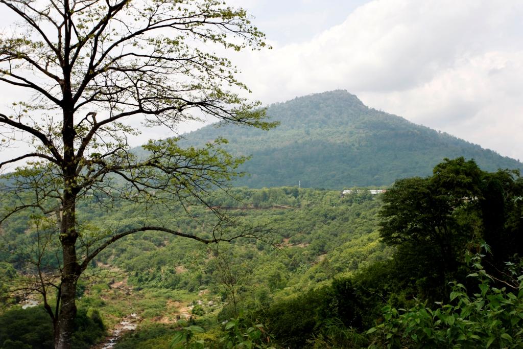 Cảnh vật tạo một cảm giác bềnh bồng mênh mông núi rừng...
