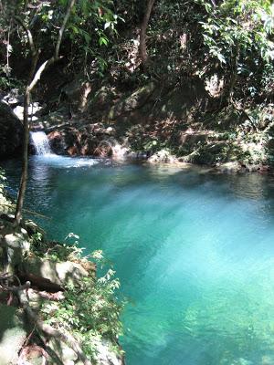 dòng suối xanh mát
