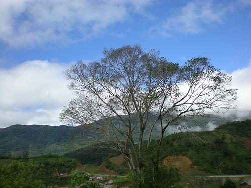 Núi Ngọc Linh giáp ranh 1 tỉnh Kon Tum và Quảng Nam