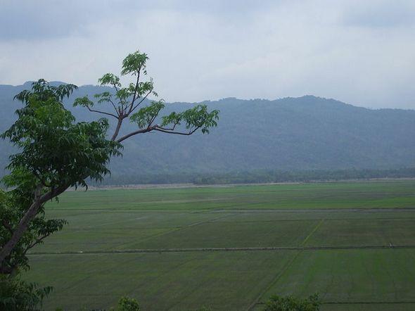 Cánh đồng rộng lớn bên núi nước