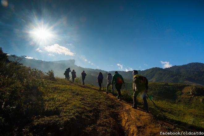 Cách thị trấn Mộc Châu 30 km, đỉnh Pha Luông được ví như nóc nhà của Mộc Châu, nằm giữa biên giới Việt - Lào. Từ đồn biên phòng Pha Luông ở chân lên tới đỉnh núi phải mất 3 - 4 tiếng đi bộ.