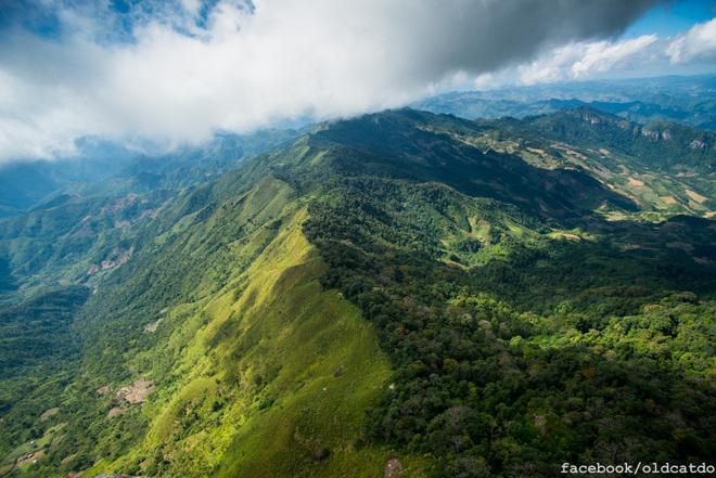 Đường biên giới Việt - Lào được chia tách tự nhiên bởi hai thảm thực vật khác biệt.