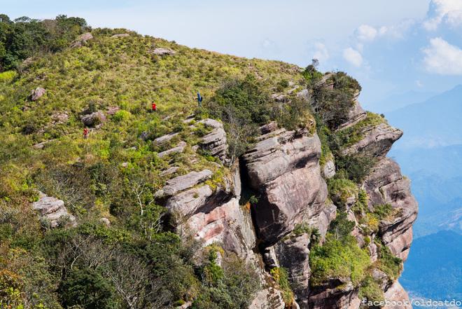 Những vạt cây cỏ xanh tươi phủ lên khối đá khổng lồ lơ lửng giữa trời cao.