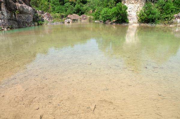 Nước trong hồ trong tới mức bạn có thể nhìn thấy rõ những chú cá đang bơi lội tung tăng dưới đáy