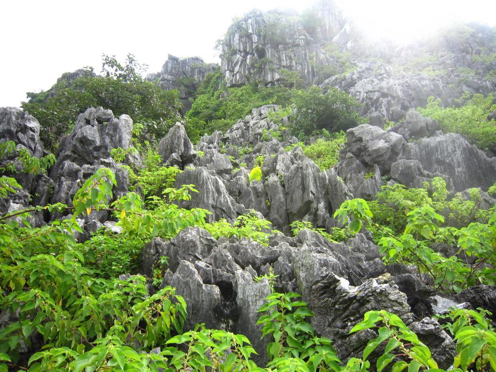 Núi Voi Hải Phòng có nhiều hang động đẹp