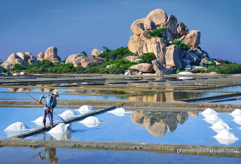 Bạn có thể tới Ninh Thuận vào bất cứ mùa nào trong năm