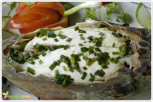 Cá bò hòm - Đặc sản Phan Thiết.