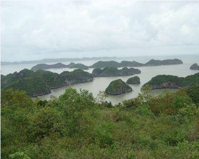 Đảo Cát Cò nhìn từ trên cao