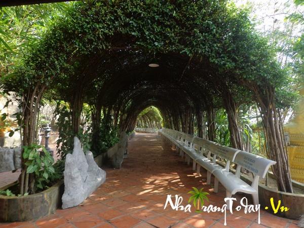 (con đường cây xanh với rất nhiều tên ca sĩ, công ty đã từng đến viếng chùa)