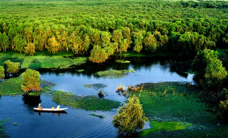 Rừng Tràm Trà Sư - Điểm đến hấp dẫn ở An Giang