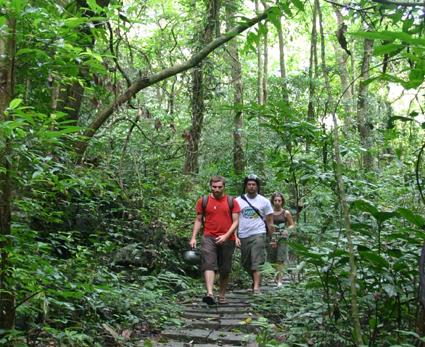 Đường đi đã được xây dựng cho du khách đi sâu vào trong khám phá
