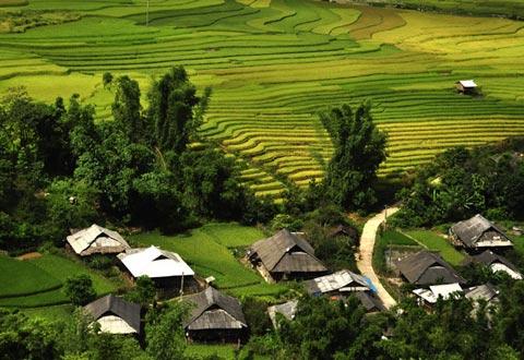 Những bản làng ngay cạnh ruộng.