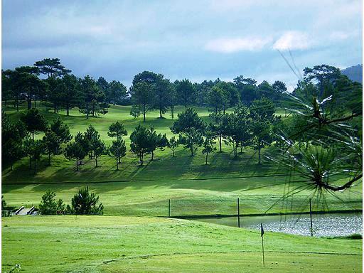 Một góc sân golf Đồi Cù Đà Lạt