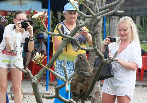 Khách du lịch nước ngoài trên đảo Khỉ - Ảnh: Nguyễn Chung
