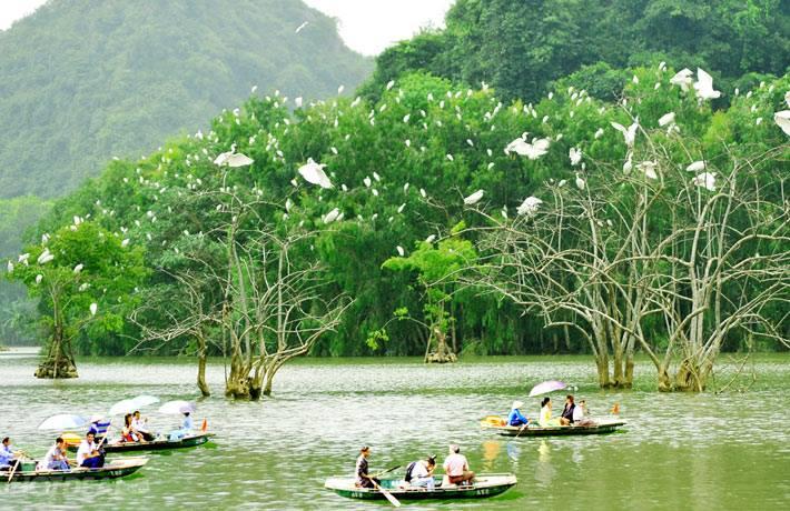 Ngồi thuyền thưởng ngoạn trên sông Kênh Gà