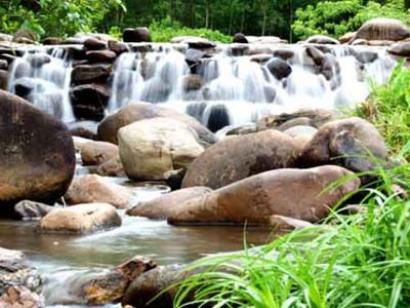 Suối nước nóng Thanh Tân