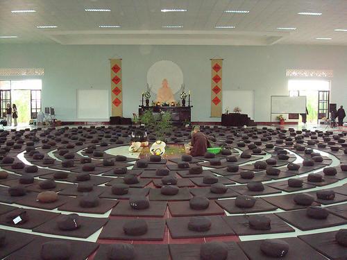 Đây là nơi dành cho các vị Tăng Ni tu tập theo môn phái Tịnh độ của Thiền Sư Thích Nhất Hạnh. Tất cả những sinh hoạt hằng ngày như đi đứng, nằm ngồi, ăn mặcv.v…đều được tập trung cao độ gọi là 'chánh điện'.