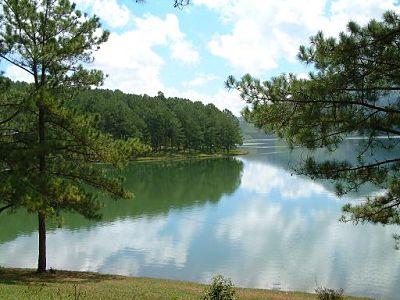 Một khu du lịch mới được đưa vào khai thác là thung lũng vàng tọa lạc bên hồ Đankia - suối Vàng, cách thành phố Đà Lạt khoảng 15 km theo hướng Tây Bắc.