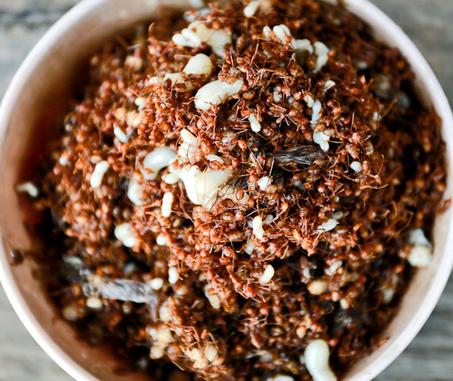 Cá gỏi kiến vàng - Đặc sản Kon Tum